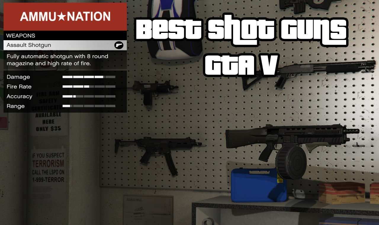 Best Shot Guns GTA V